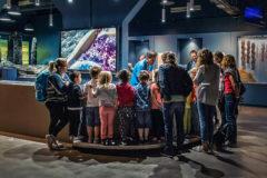 Pavillon Bretagne - Animation Minilab à Océanopolis © Simon Cohen