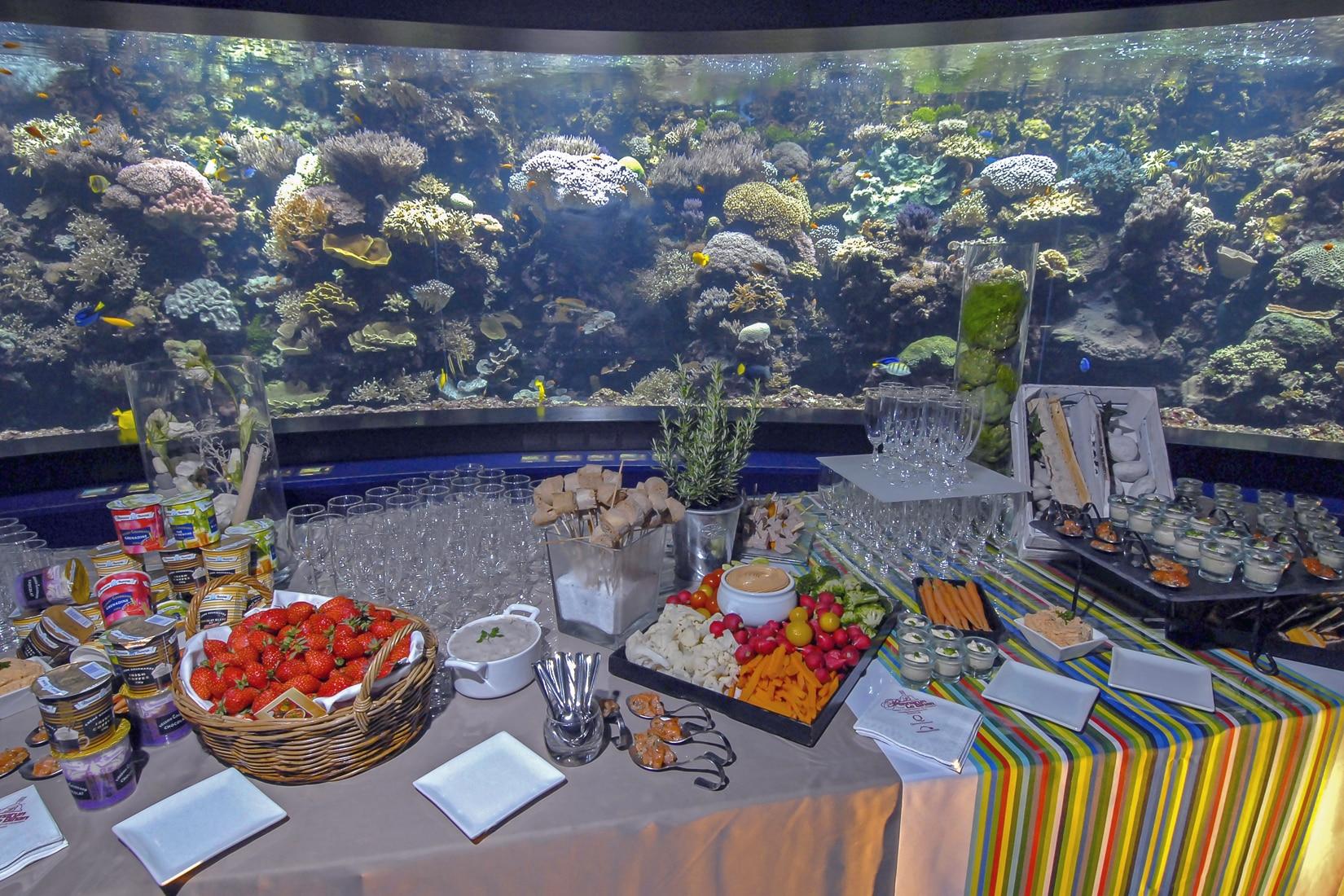 Cocktail dans le pavillon tropical © Océanopolis