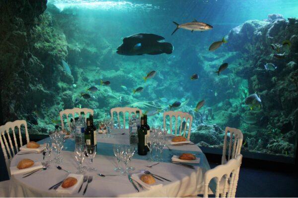 Diner dans le pavillon tropical