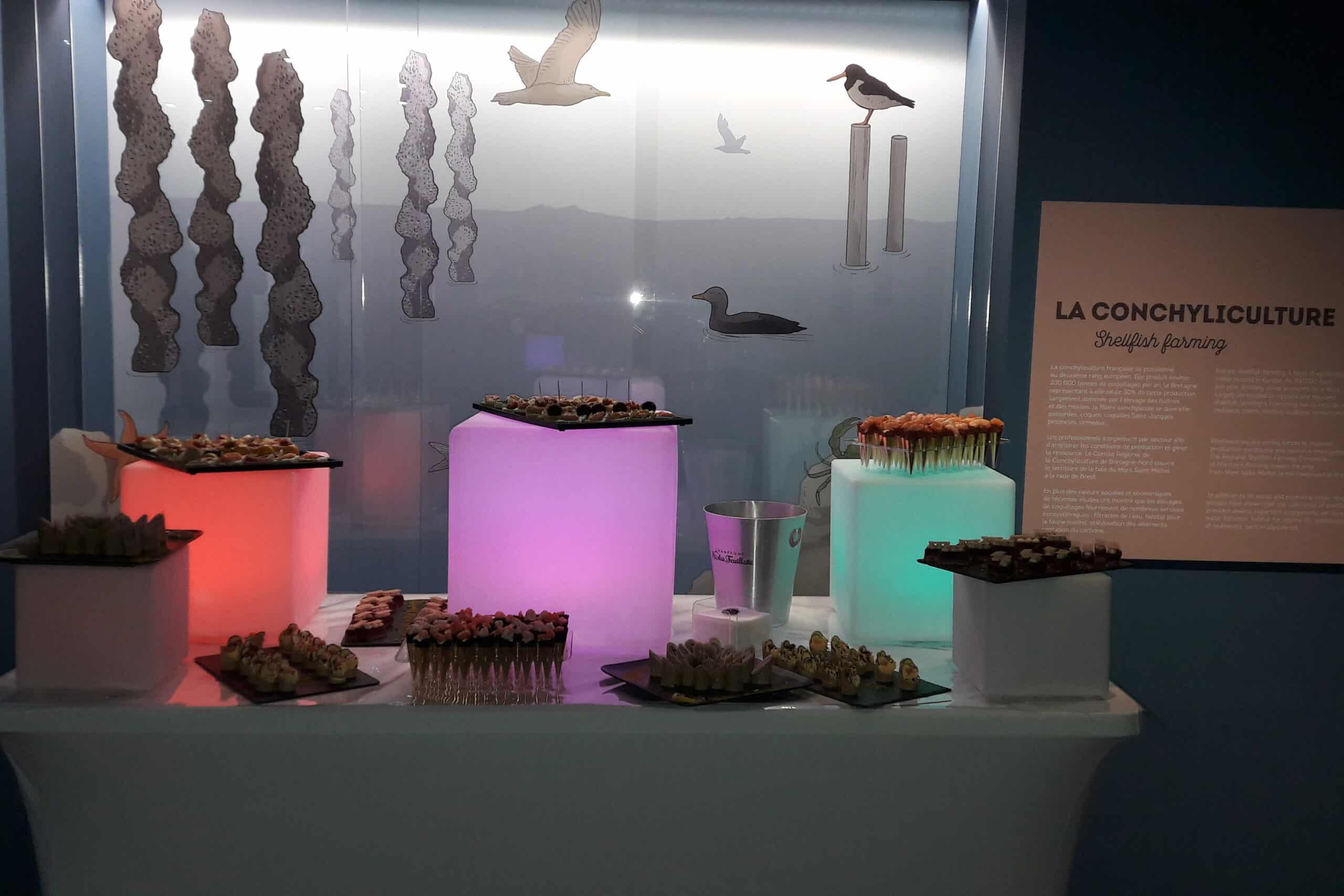 Cocktail en soirée devant l'espace Conchyliculture du pavillon Bretagne