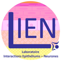 logo laboratoire interaction epitheliums neurones