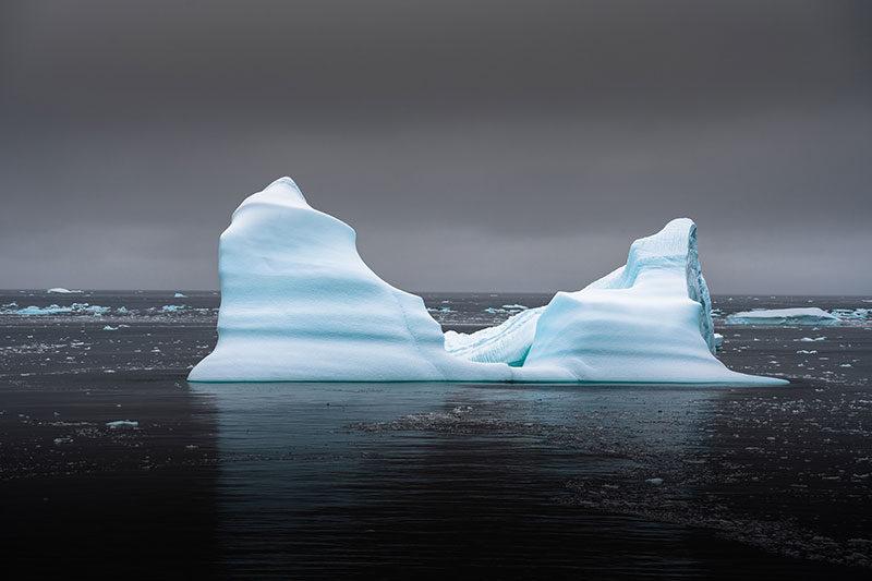 Océanopolis engagé avec la Plateforme Océan et Climat