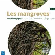 [ÉCO]SYSTEMES & CO : les récifs coralliens et les mangroves