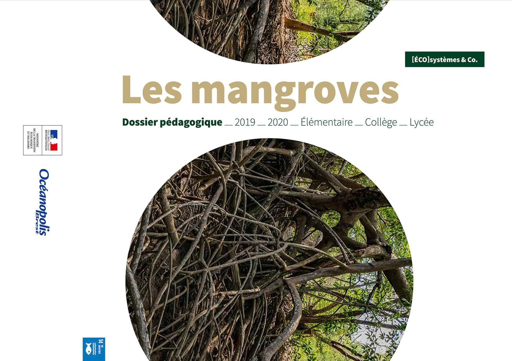 Couverture du dossier pédagogique sur les mangroves