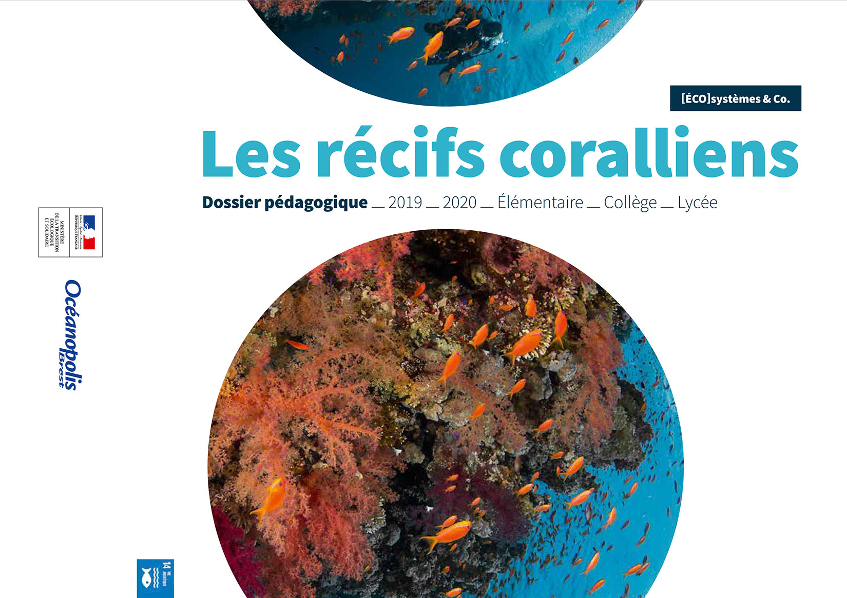 Dossier pédagogique sur les récifs coralliens