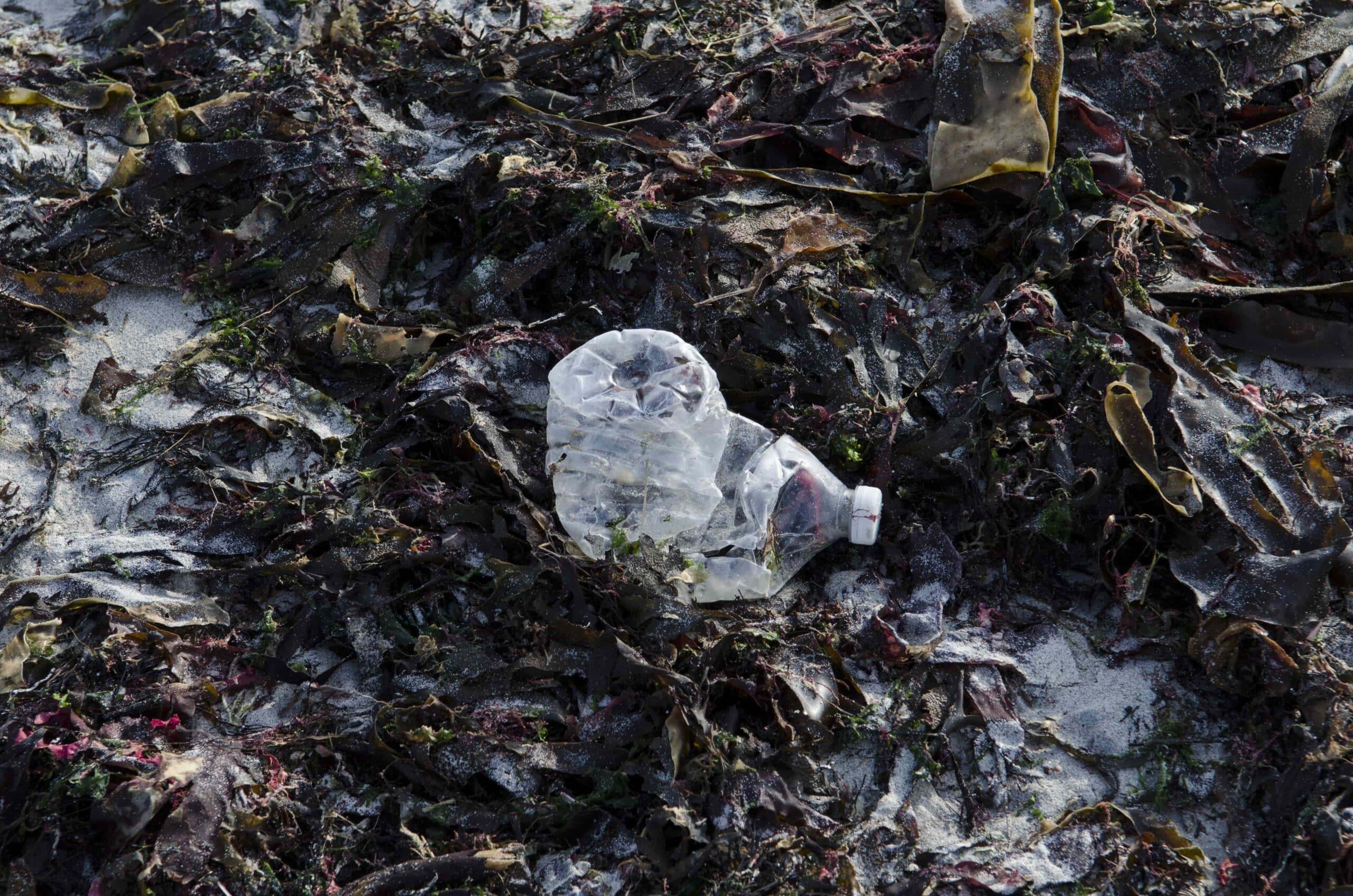 Déchets plastiques sur la plage - © Océanopolis