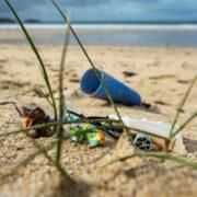 Plastik panic dans l'océan
